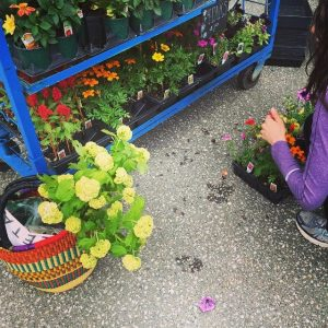 jenna at the farmers market